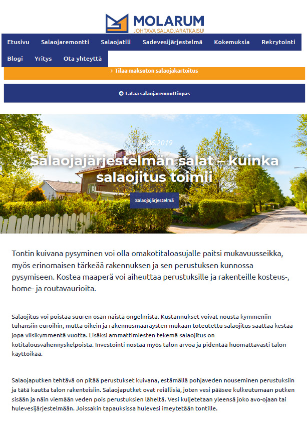 Molarum-verkkosivut / blog and content writer  Finnish language content and blog writer available molarum salaojansalat